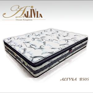 ALIVIA-B505(WEB)-01