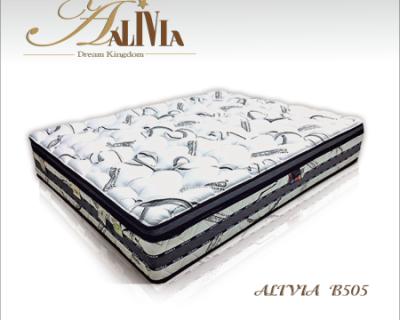 ALIVIA B505型