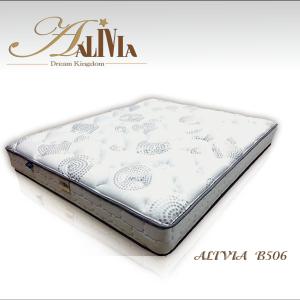 ALIVIA-B506(WEB)-01