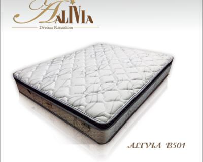 ALIVIA B501型